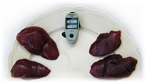 Birds breast with Tenderization Timer